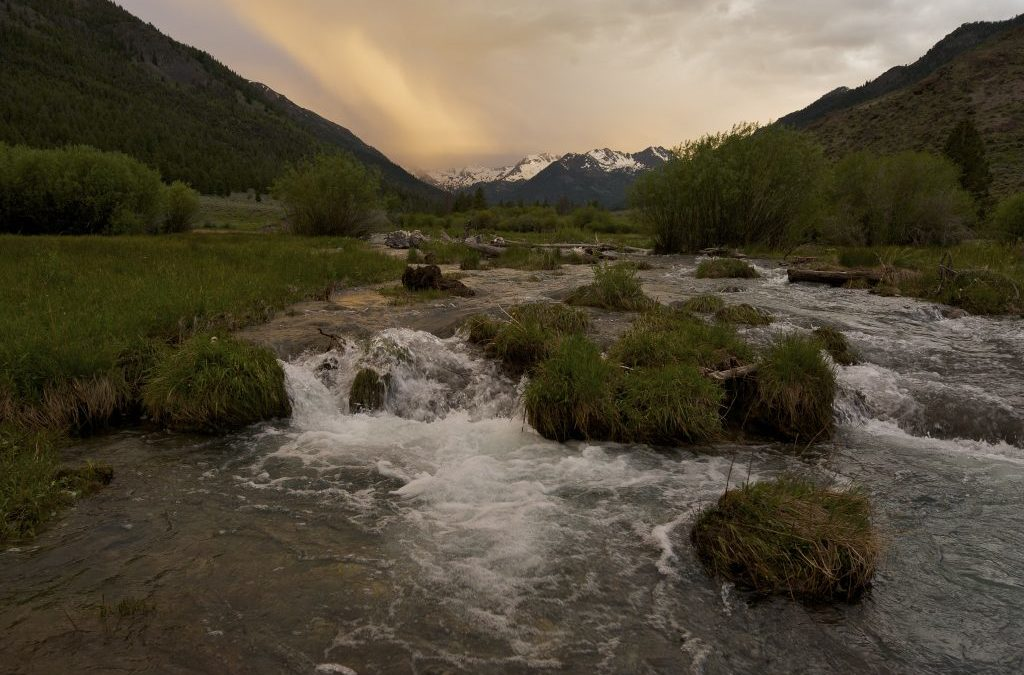 Snake River Vision: Climate Resilience